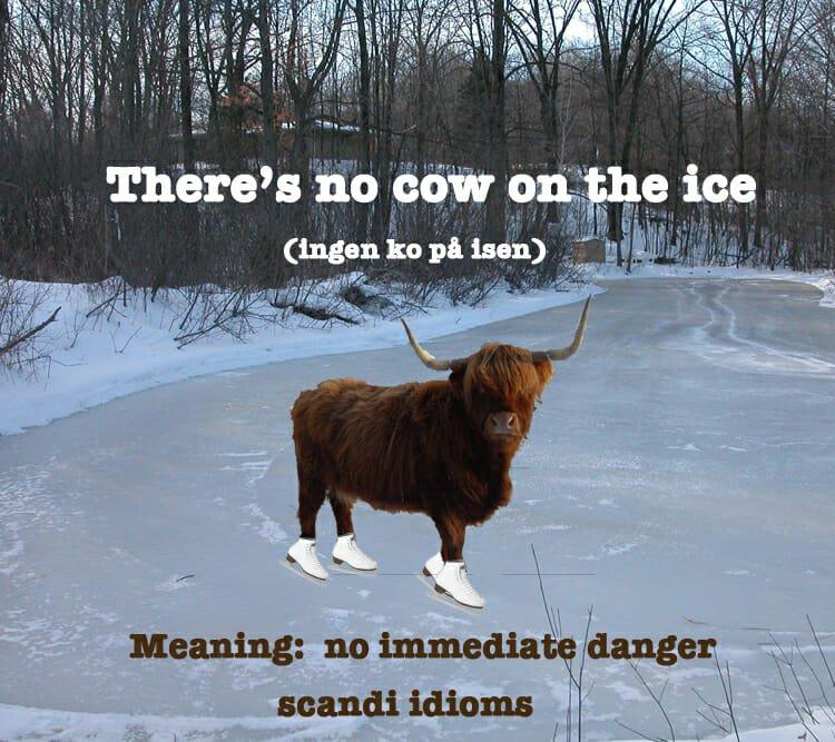 Great Scandinavian idioms - ScandiKitchen