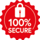 100% Secure Shopping